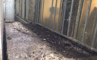 referenzen geb udereinigung ruthemeyer. Black Bedroom Furniture Sets. Home Design Ideas